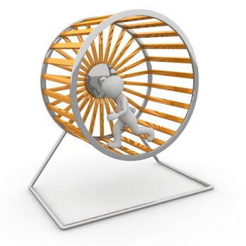 hamster-wheel-1014047_640