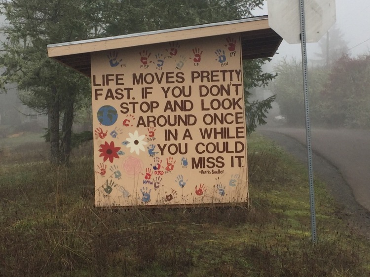 Life Moves Pretty fast. If you don't stop and look around once in a while, you could miss it. Quote from Ferris Bueller