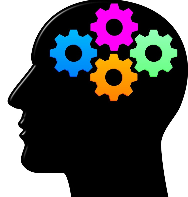 cogs as a brain